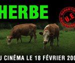 Documentaire sur les éleveurs laitiers en Bretagne : HERBE de Olivier Porte et Matthieu Levain