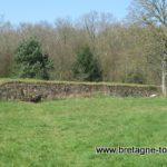 Quand les Vikings étaient en Bretagne… dans le camp de Péran à Plédran (Côtes d'Armor)