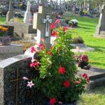 Les tombes de l'espoir du cimetière de l'Espérance...