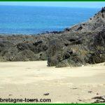 Les algues en Bretagne : de l'engrais de nos grands-pères aux compléments alimentaires et  produits cosmétiques