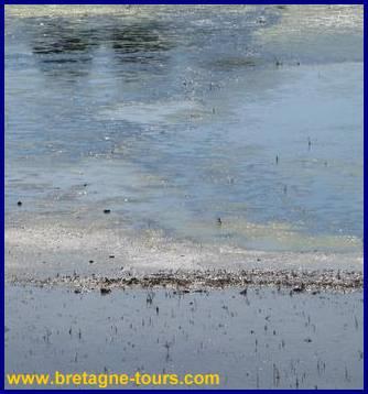 eau de mer qui deviendra du sel