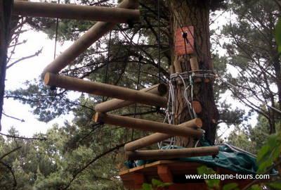 Grimpe d'arbres à Rennes