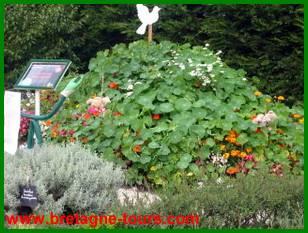 jardin amateur des Jardins de Brocéliande à Montfort sur Meu