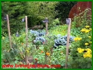 jardin amateur dans les jardins de Brocéliande à Montfort sur Meu