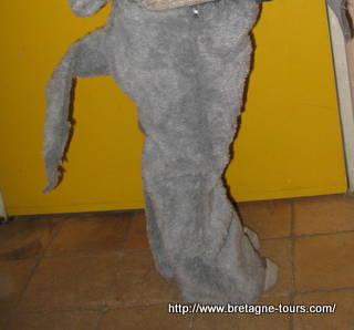 pantalon avec une queue pour enfant de 5 ans