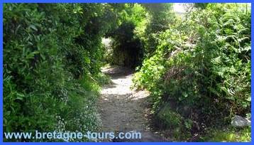 Pour aller au jardin, passez par ce petit chemin