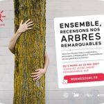 Recensement des arbres remarquables à Rennes