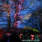 Le solstice d'hiver à la Roche aux Fées