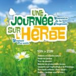 Une journée sur l'herbe à Rennes Sud.... (écocentre de la Taupinais)